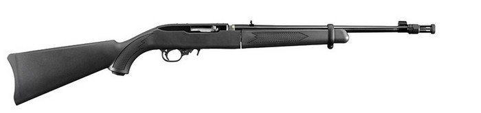 Ruger 10 22 Take-Down