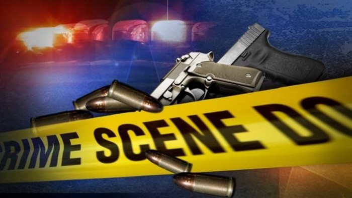 Armed robber shoots himself