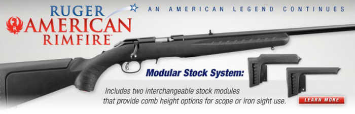 Ruger Modular Stock System